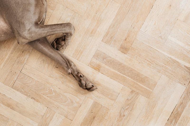 floor installation Melbourne